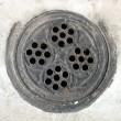 Coal hole cover - Tidy Street